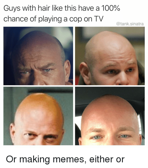 Anaconda, Funny, and Memes: Guys with hair like this have a 100%  chance of playing a cop on TV  @tank.sinatra Or making memes, either or