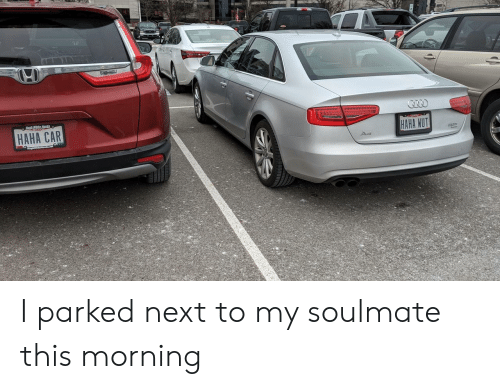 wut: HAHA CAR  HAHA WUT I parked next to my soulmate this morning