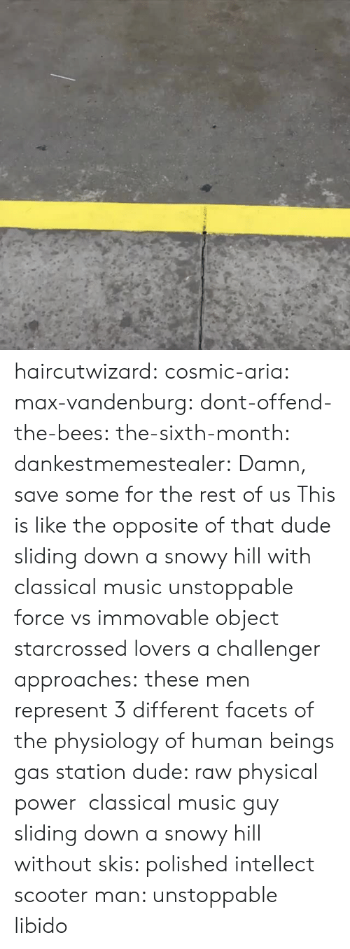 Classical Music.: haircutwizard: cosmic-aria:  max-vandenburg:  dont-offend-the-bees:  the-sixth-month:  dankestmemestealer: Damn, save some for the rest of us This is like the opposite of that dude sliding down a snowy hill with classical music  unstoppable force vs immovable object  starcrossed lovers  a challenger approaches:  these men represent 3 different facets of the physiology of human beings gas station dude: raw physical power classical music guy sliding down a snowy hill without skis: polished intellect scooter man: unstoppable libido