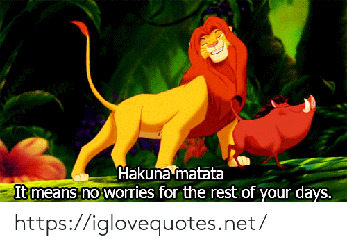 Net, Rest, and Means: Hakuna matata  It means no worries for the rest of your days. https://iglovequotes.net/
