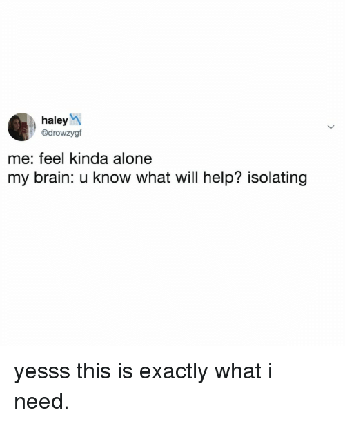 yesss: haleyM  @drowzygf  me: feel kinda alone  my brain: u know what will help? isolating yesss this is exactly what i need.