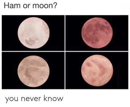 Mooning You: Ham or moon? you never know