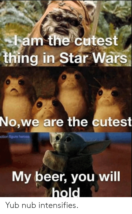 Beer, Star Wars, and Heroes: ham the cutest  thing in Star Wars  No,we are the cutest  ction figure heroes  My beer, you will  hold Yub nub intensifies.