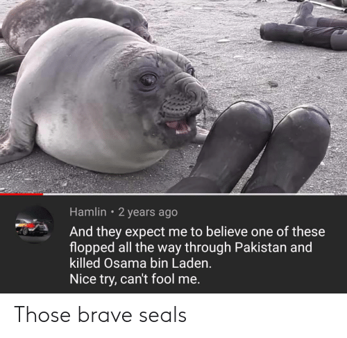 nice try: Hamlin 2 years ago  And they expect me to believe one of these  flopped all the way through Pakistan and  killed Osama bin Laden.  Nice try, can't fool me. Those brave seals