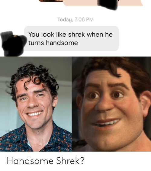 Shrek: Handsome Shrek?