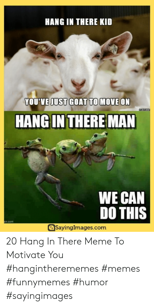 There Meme: HANG IN THERE KID  YOU'VE JUST GOAT TO MOVE ON  memes  HANG IN THERE MAN  WE CAN  DO THIS  en com  SayingImages.com 20 Hang In There Meme To Motivate You #hangintherememes #memes #funnymemes #humor #sayingimages