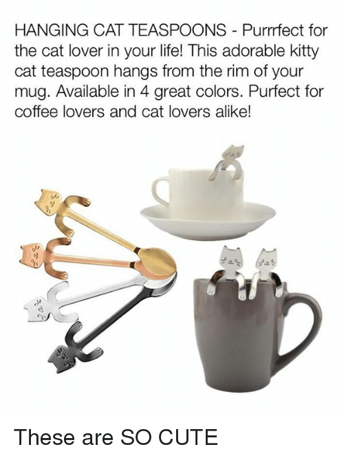 coffee lovers: HANGING CAT TEASPOONS Purrrfect for  the cat lover in your life! This adorable kitty  cat teaspoon hangs from the rim of your  mug. Available in 4 great colors. Purfect for  coffee lovers and cat lovers alike! These are SO CUTE