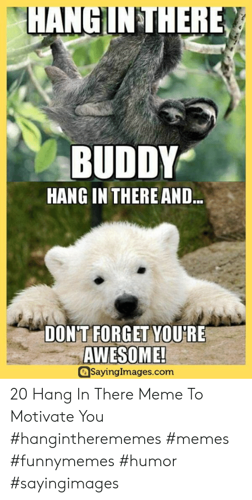 There Meme: HANGINTHERE  BUDDY  HANG IN THERE AND..  DONT FORGET YOURE  AWESOME!  SayingImages.com 20 Hang In There Meme To Motivate You #hangintherememes #memes #funnymemes #humor #sayingimages