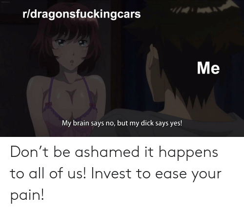 Hanimetv Rldragonsfuckingcars My Brain Says No But My Dick Says Yes Don T Be Ashamed It Happens To All Of Us Invest To Ease Your Pain Brain Meme On Esmemes Com