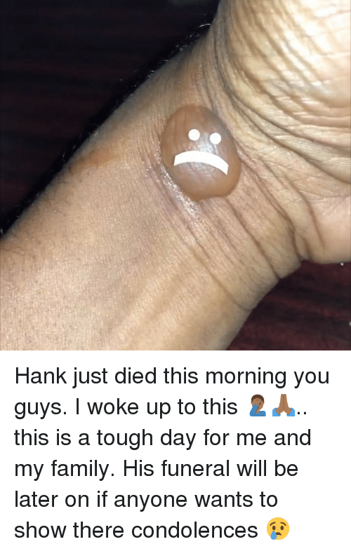 Family, Memes, and Condolences: Hank just died this morning you guys. I woke up to this 🤦🏾♂️🙏🏾.. this is a tough day for me and my family. His funeral will be later on if anyone wants to show there condolences 😢