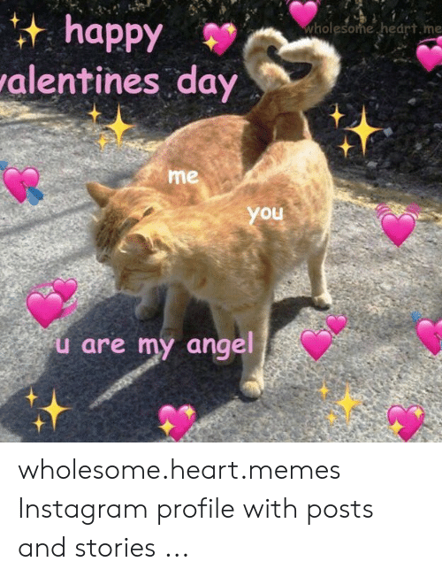 Wholesome Heart: happy  alentines day  wholesome hedrt.me  me  you  u are my angel wholesome.heart.memes Instagram profile with posts and stories ...
