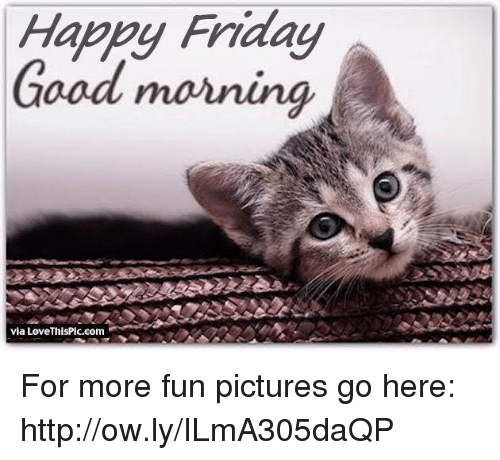 Happy Friday Good Morning Via Lovethispiccom For More Fun Pictures