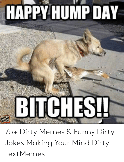 Funny Sex Memes: HAPPY HUMP DAY  BITCHES! 75+ Dirty Memes & Funny Dirty Jokes Making Your Mind Dirty   TextMemes