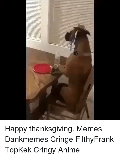 Memes, 🤖, and Topkek: Happy thanksgiving. Memes Dankmemes Cringe FilthyFrank TopKek Cringy Anime