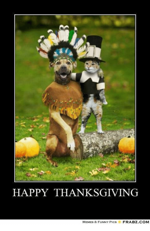 Thanksgiving Meme Funny