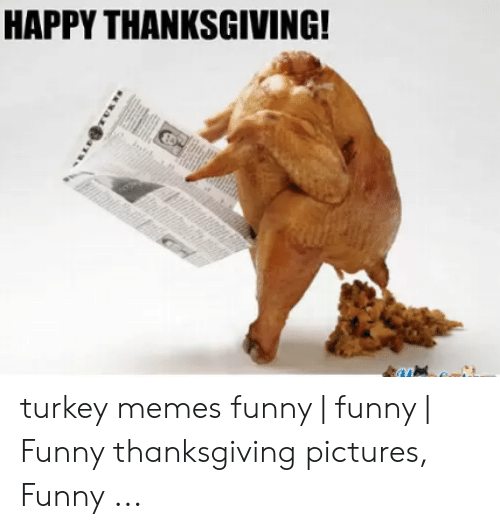 Funny, Memes, and Thanksgiving: HAPPY THANKSGIVING! turkey memes funny | funny | Funny thanksgiving pictures, Funny ...