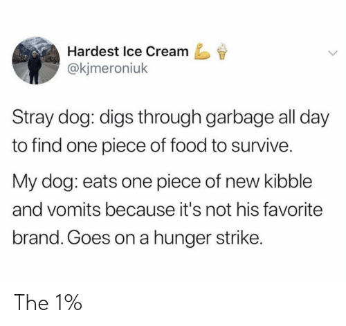 Food, Ice Cream, and One Piece: Hardest Ice Cream  @kjmeroniuk  Stray dog: digs through garbage all day  to find one piece of food to survive.  My dog: eats one piece of new kibble  and vomits because it's not his favorite  brand. Goes on a hunger strike. The 1%