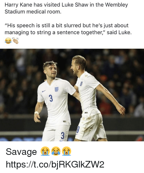 """Savage, Soccer, and Kane: Harry Kane has visited Luke Shaw in the Wembley  Stadium medical room  """"His speech is still a bit slurred but he's just about  managing to string a sentence together,"""" said Luke. Savage 😭😂😭 https://t.co/bjRKGlkZW2"""