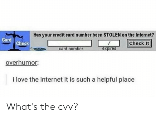 Internet, Love, and Reddit: Has your credit card number been STOLEN on the Internet?  Card  Check  Check It  card number  expires  overhumor:  i love the internet it is such a helpful place What's the cvv?
