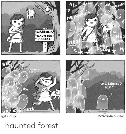 forest: haunted forest