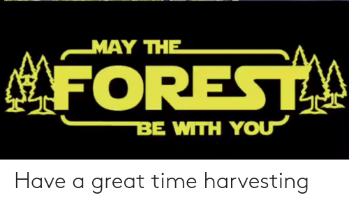 Harvesting: Have a great time harvesting