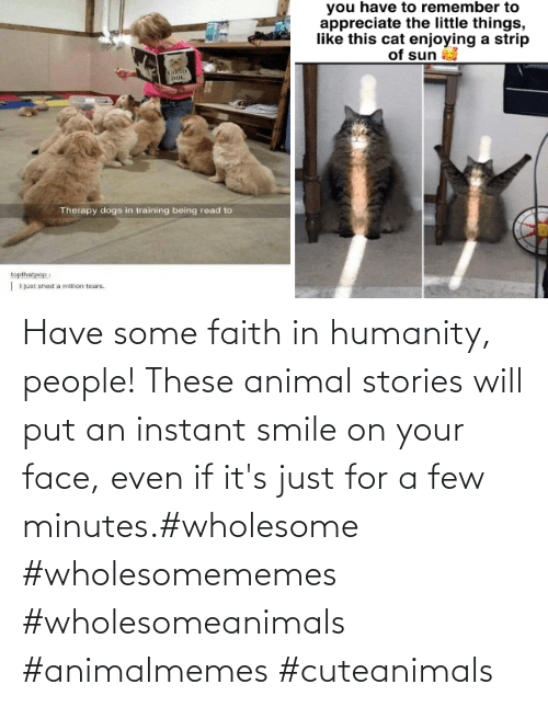 Animal: Have some faith in humanity, people! These animal stories will put an instant smile on your face, even if it's just for a few minutes.#wholesome #wholesomememes #wholesomeanimals #animalmemes #cuteanimals