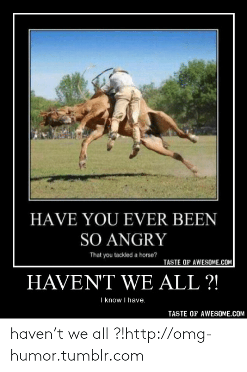 T We: HAVE YOU EVER BEEN  SO ANGRY  That you tackled a horse?  TASTE OF AWESOME.COM  HAVENT WE ALL ?!  I know I have.  TASTE OF AWESOME.COM haven't we all ?!http://omg-humor.tumblr.com