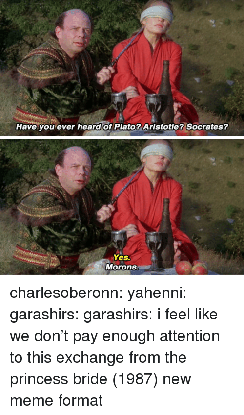 Meme, Target, and Tumblr: Have you ever heard of Plato? Aristotle? Socrates?   Yes.  Morons. charlesoberonn:  yahenni:  garashirs:  garashirs: i feel like we don't pay enough attention to this exchange from the princess bride (1987) new meme format