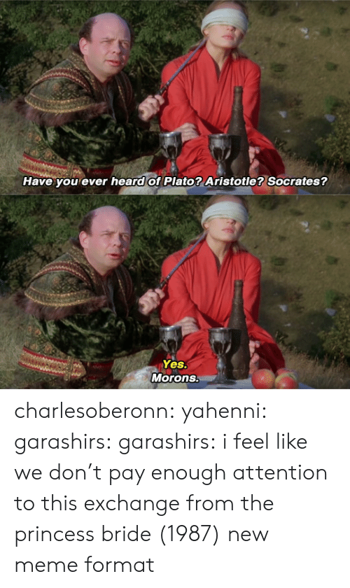 Meme Format: Have you ever heard of Plato? Aristotle? Socrates?   Yes.  Morons. charlesoberonn: yahenni:  garashirs:  garashirs: i feel like we don't pay enough attention to this exchange from the princess bride (1987) new meme format