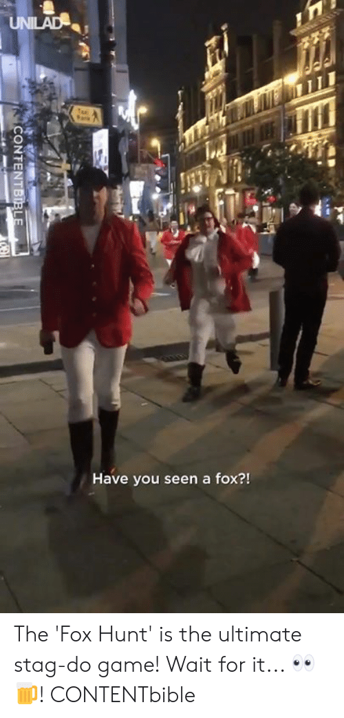 The Fox: Have you seen a fox?! The 'Fox Hunt' is the ultimate stag-do game! Wait for it... 👀🍺!  CONTENTbible