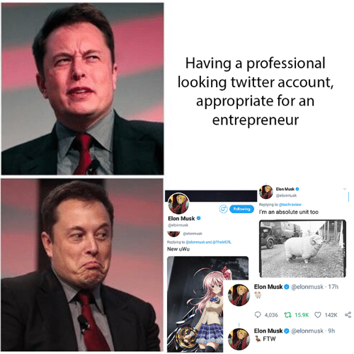 Dank, Twitter, and Entrepreneur: Having a professional  looking twitter account,  appropriate for an  entrepreneur  Elon Musk o  @elonmusk  Replying to @techreview  I'm an absolute unit too  Elon Musk  elonmusk  @elonmusk  Replying to Celonmusk and @TheMERL  New uWu  Elon Musk @elonmusk 17h  04,036  15.9K  142K  Elon Musk@elonmusk 9h  るFTW