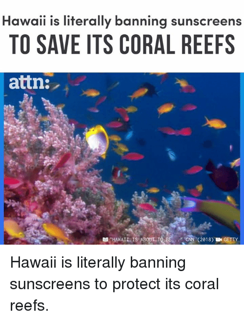 """cnn.com, Memes, and Hawaii: Hawaii is literally banning sunscreens  TO SAVE ITS CORAL REEFS  attn:  單,""""HAWAIL, IS ABOUT-TRE  """".CNN  (2018)  EN GETTY Hawaii is literally banning sunscreens to protect its coral reefs."""