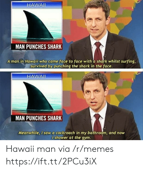 surfing: HAWAII  MAN PUNCHES SHARK  A man in Hawaii who came face to face with a shark whilst surfing,  survived by punching the shark in the face.  HAWAI  MAN  PUNCHES SHARK  Meanwhile, I sawa cockroach in my bathroom, and now  I shower at the gym. Hawaii man via /r/memes https://ift.tt/2PCu3iX