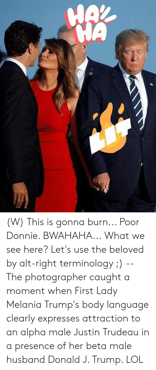 Melania: HAX  HA (W) This is gonna burn... Poor Donnie. BWAHAHA...  What we see here? Let's use the beloved by alt-right terminology ;) -- The photographer caught a moment when First Lady Melania Trump's body language clearly expresses attraction to an alpha male Justin Trudeau in a presence of her beta male husband Donald J. Trump.   LOL
