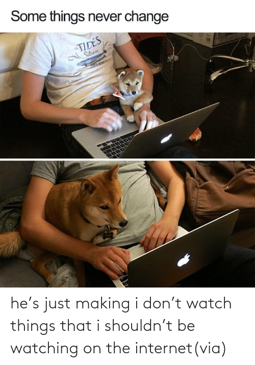 the internet: he's just making i don't watch things that i shouldn't be watching on the internet(via)