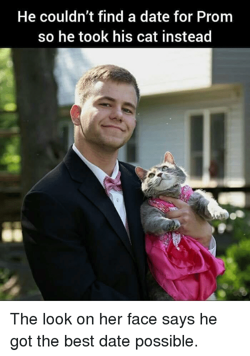 Best, Date, and Got: He couldn't find a date for Prom  so he took his cat instead The look on her face says he got the best date possible.