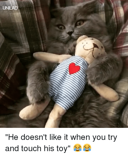 """Dank, 🤖, and Touch: """"He doesn't like it when you try and touch his toy"""" 😂😂"""