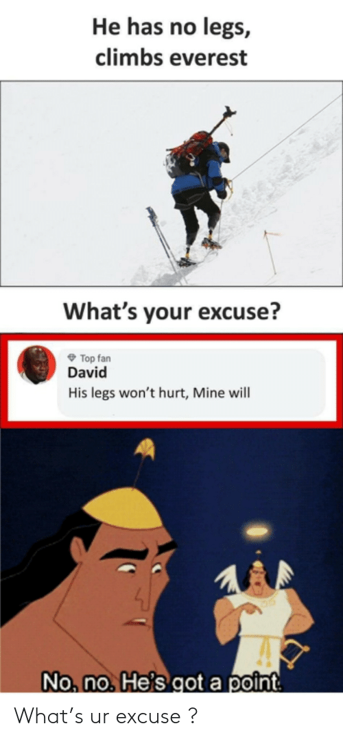 fan: He has no legs,  climbs everest  What's your excuse?  O Top fan  David  His legs won't hurt, Mine will  No, no. He's got a point What's ur excuse ?