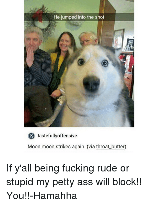 moon moon: He jumped into the shot  to  tastefullyoffensive  Moon moon strikes again. (via throat butter) If y'all being fucking rude or stupid my petty ass will block!! You!!-Hamahha
