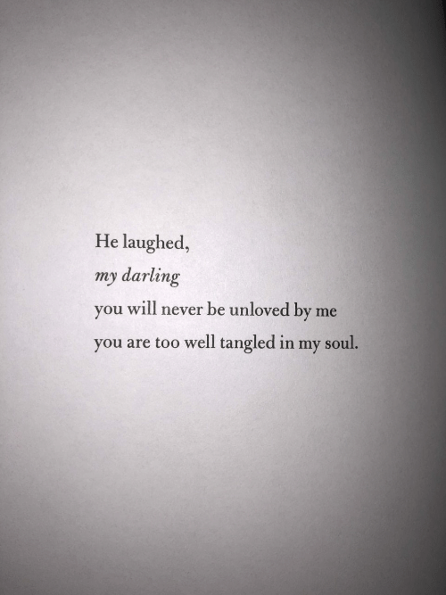 Never, Tangled, and Soul: He laughed,  my darling  you will never be unloved by  me  you are too well tangled in my soul.