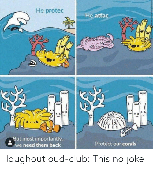 He Attac: He protec  He attac  . But most importantly  e need them back  Protect our corals laughoutloud-club:  This no joke