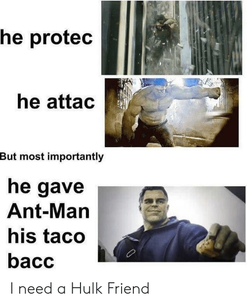 ant man: he protec  he attac  But most importantly  he gave  Ant-Man  his taco  bacc I need a Hulk Friend