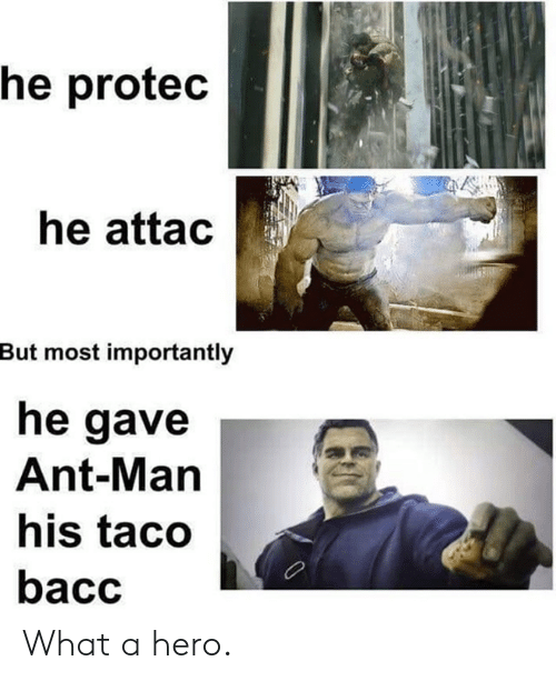 Dank, 🤖, and Ant Man: he protec  he attac  But most importantly  he gave  Ant-Man  his taco  bacc What a hero.
