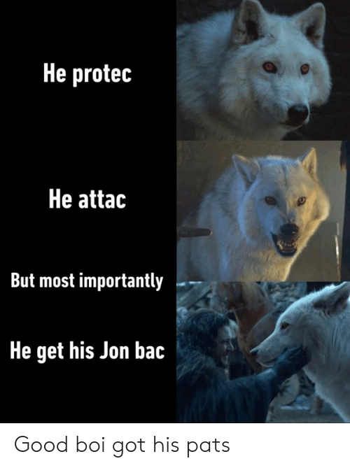 He Attac: He protec  He attac  But most importantly  He get his Jon bac Good boi got his pats