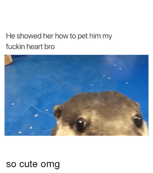 Cute, Omg, and Heart: He showed her how to pet him my  fuckin heart bro so cute omg