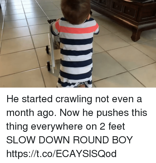 Memes, Boy, and 🤖: He started crawling not even a month ago. Now he pushes this thing everywhere on 2 feet  SLOW DOWN ROUND BOY https://t.co/ECAYSlSQod