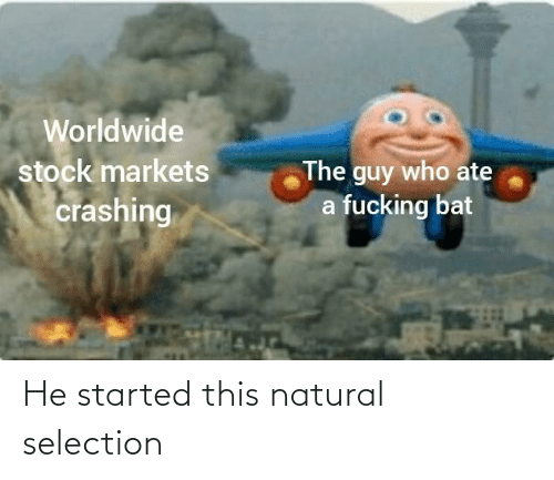 Selection: He started this natural selection