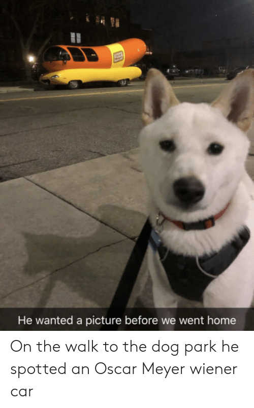 The Walk: He wanted a picture before we went home On the walk to the dog park he spotted an Oscar Meyer wiener car