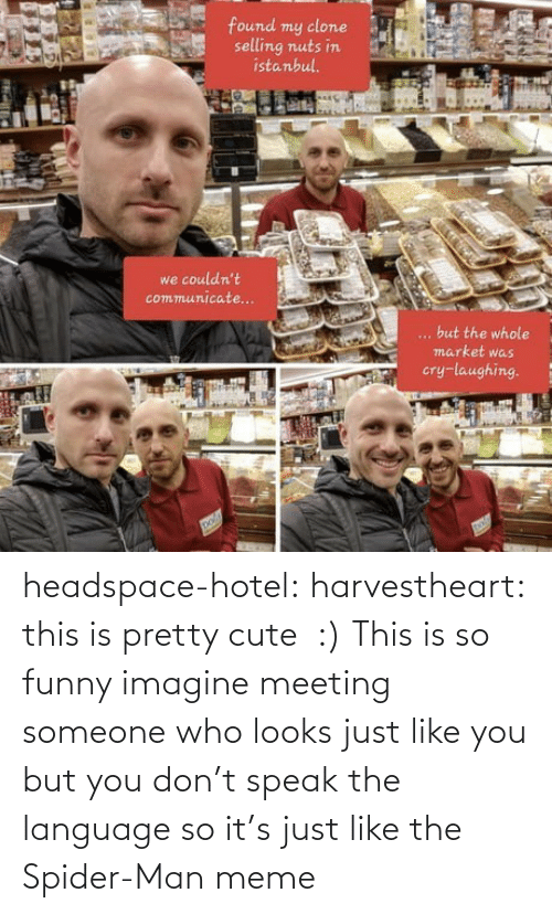 language: headspace-hotel:  harvestheart: this is pretty cute  :)   This is so funny imagine meeting someone who looks just like you but you don't speak the language so it's just like the Spider-Man meme