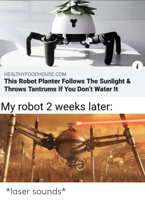 Weeks: HEALTHYFOODHOUSE.COM  This Robot Planter Follows The Sunlight &  Throws Tantrums If You Don't Water It  My robot 2 weeks later: *laser sounds*